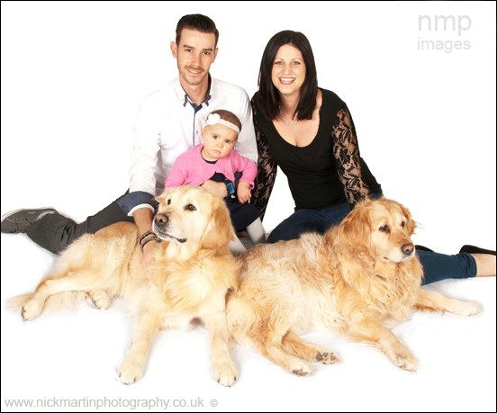 family dog portrait photographer, pet photography, pet dog photography woodley reading bracknell, wokingham